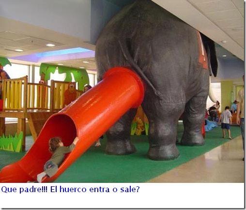 elefante_1